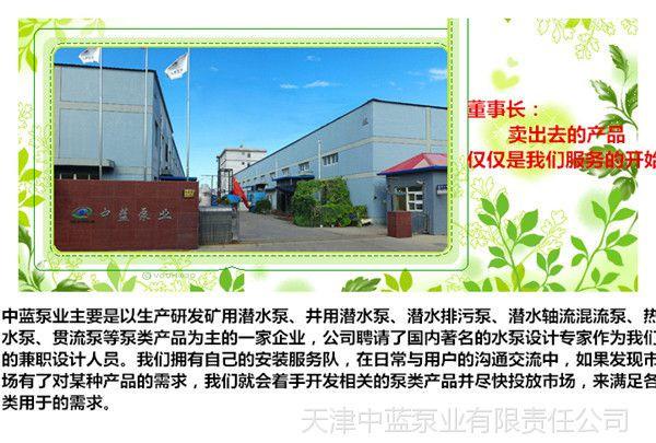 天津中蓝泵业有限公司形象图1