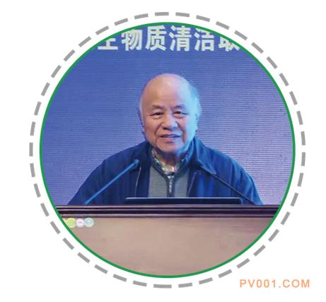 """中国工程院院士、清华大学教授倪维斗:农村能源利用应坚持""""六个合适"""""""