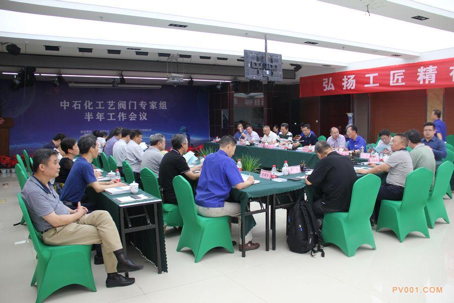 中石化工艺阀门专家组半年会议
