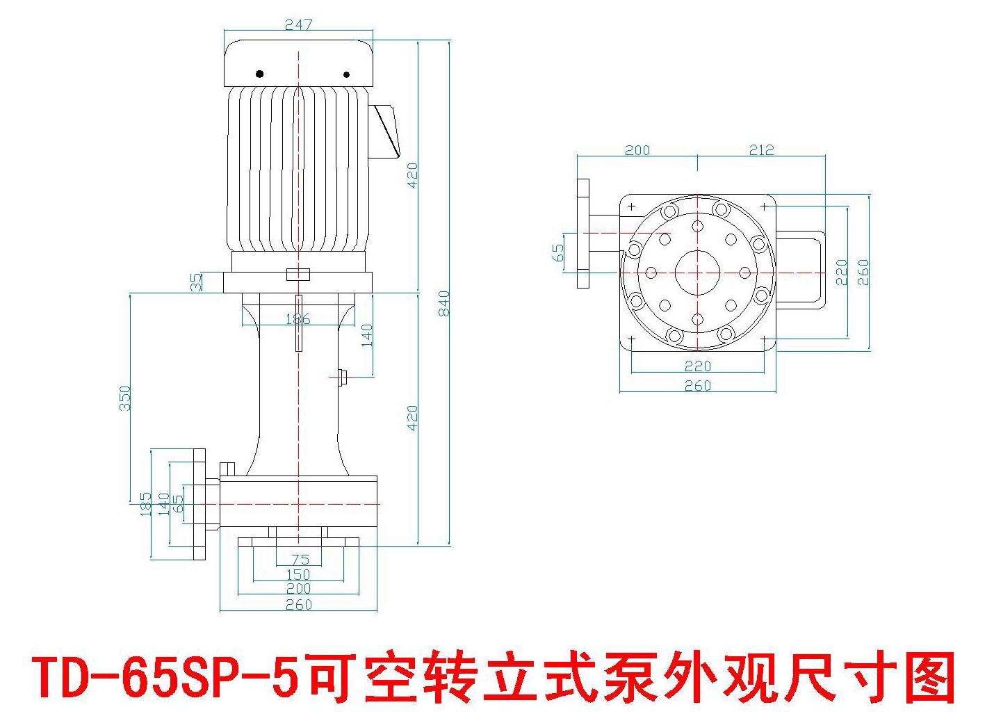 塑宝立式泵尺寸图-Model