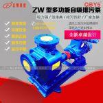50ZW10-20普通型铸铁自吸式排污泵 无泄漏自吸水泵
