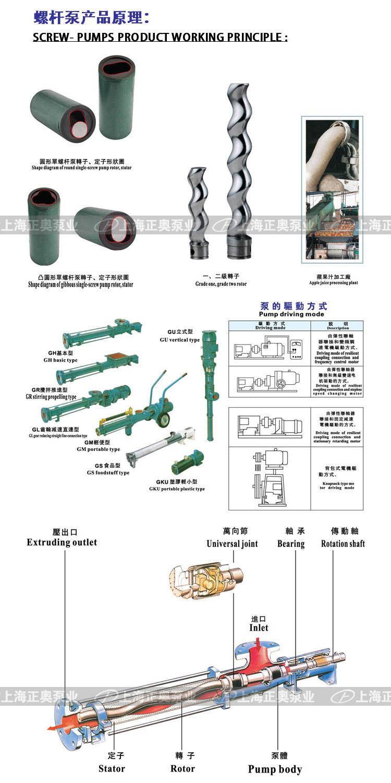 GW卫生级螺杆泵产品原理 2