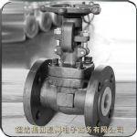 供应锻钢闸阀-缩略图1