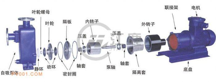 自吸式磁力泵结构图