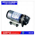 飘花手机版DP型微型12V/24V电动隔膜泵 高压塑料耐腐蚀隔膜泵
