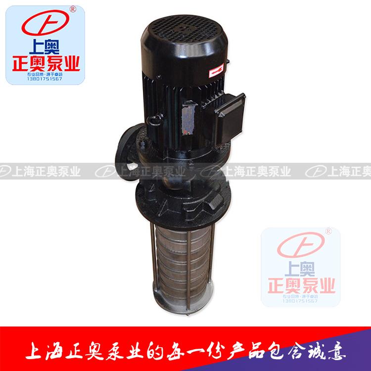 正奥泵业CDLK型浸入式多级离心泵