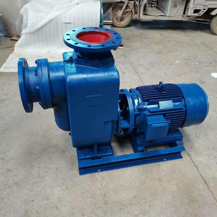 40ZW-15-30自吸排污泵
