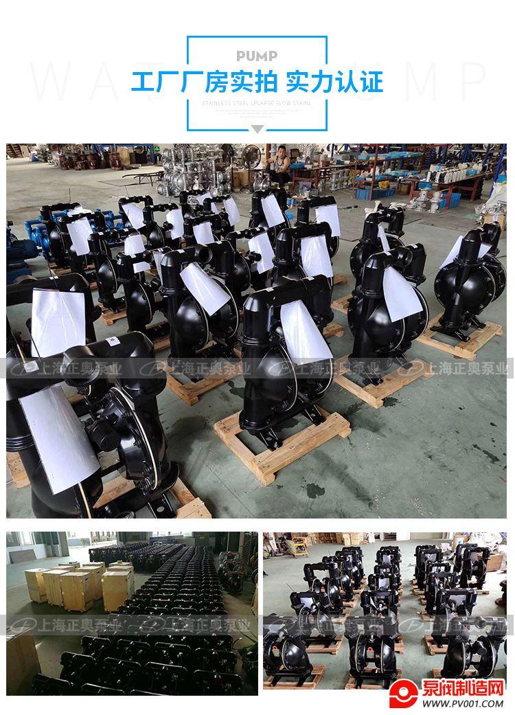 BK增强隔膜泵-0010