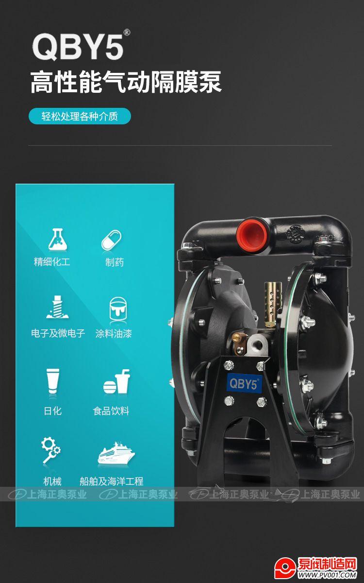 BK增强隔膜泵-0012