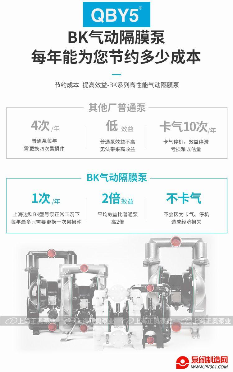 BK增强隔膜泵-0009